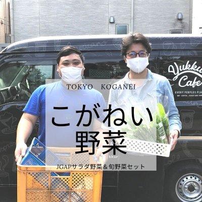 東京野菜の通販|オーガニック無農薬『こがねい野菜』と旬野菜のセット