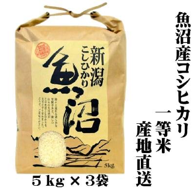 【新米/一等米】/送料無料/魚沼産コシヒカリ/白米/5㎏×3袋/15㎏