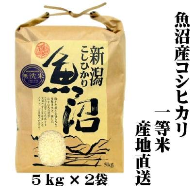 【新米/一等米】/送料無料/令和2年産/魚沼産コシヒカリ/無洗米/5㎏×2袋/...
