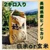 【白米or玄米2kg】長崎県産ヒノヒカリ 産地直送