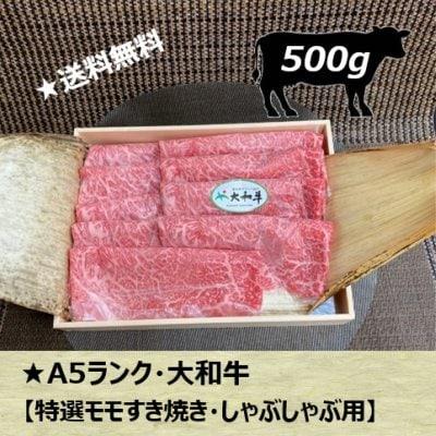 大和牛A5特選モモすき焼き・しゃぶしゃぶ用/500g/お中元に最適・送料無料