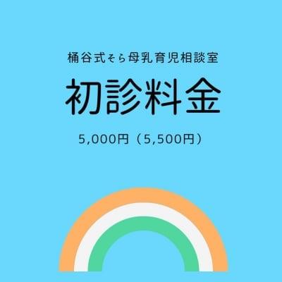 初診料金 5,000円(外税)現地払い
