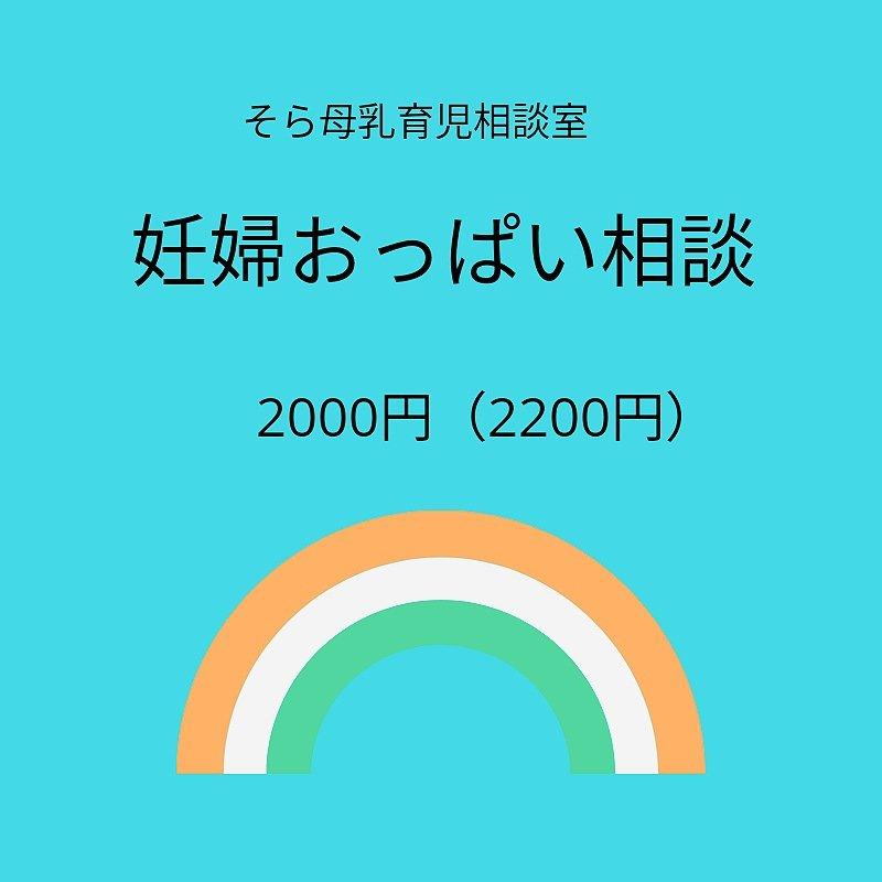 妊婦おっぱい相談 2000円(外税)現地払いのイメージその1
