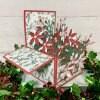 【クリスマスカード】ポインセチアのフラワーBOX レッド