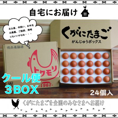 【 南国 沖縄の黄金卵】くがにたまご がんじゅうBOX 24個入り✖︎3セッ...