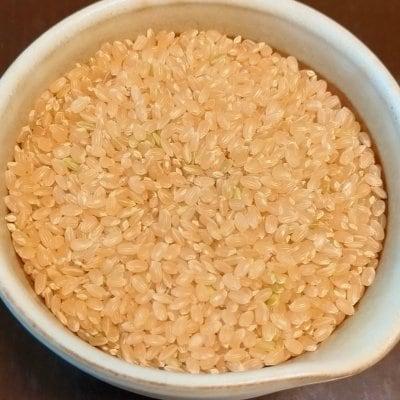 エコファーマーの高原コシヒカリ・玄米5kg