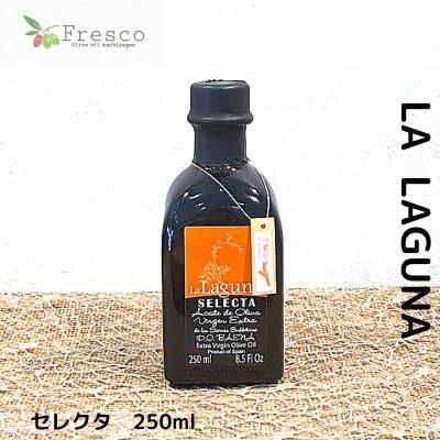 LA  LAGUNA/セレクタ/250ml/エキストラバージンオリーブオイル/沖縄のオリーブオイル専門店Fresco[フレスコ]
