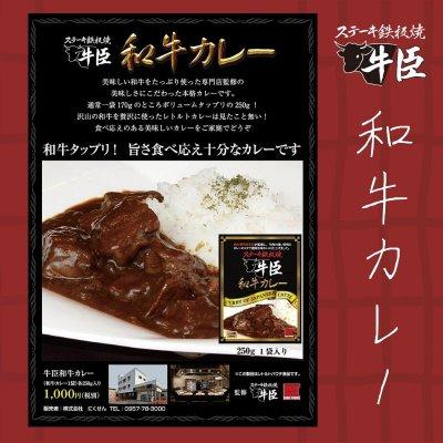 牛臣ゴロゴロ和牛カレー6食セット