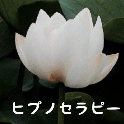 ヒプノセラピーカウンセリング【モニター】