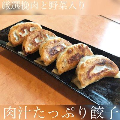 肉汁たっぷり餃子5個入り/お持ち帰り(テイクアウト)専用