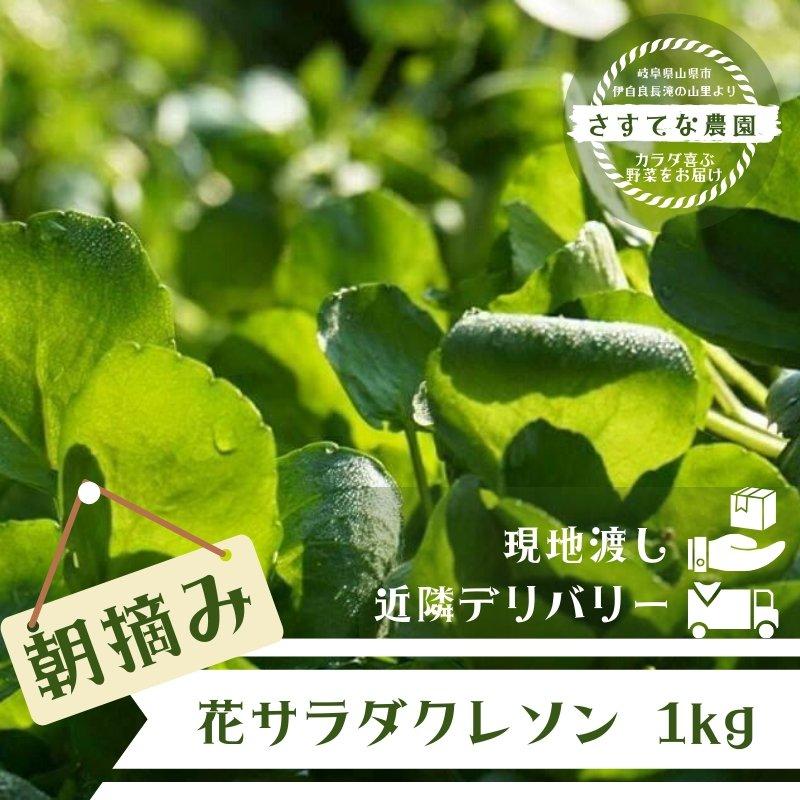 【現地受け渡し/デリバリー専用】朝摘み/清流クレソン/1kg[さすてな農園]のイメージその1