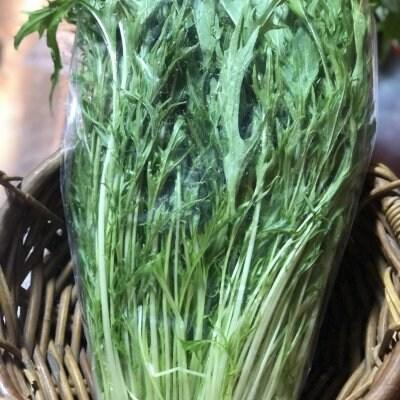 【現地受け渡し/デリバリー専用】朝摘み/水菜/約250〜300g[さすてな農園]