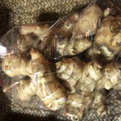 【現地受け渡し/デリバリー専用】/朝堀り菊芋/約450〜500g[さすてな農園
