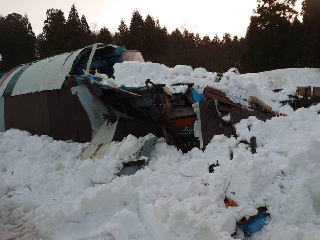 上越大雪災害支援チケット (成田農場)のイメージその3