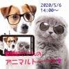 【5/6オンラインイベント】動物好きさんのアニマルトーーク!