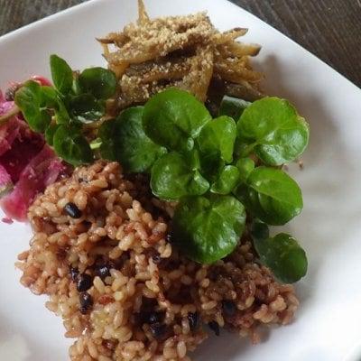 長岡式酵素玄米講習会(現地払い限定)