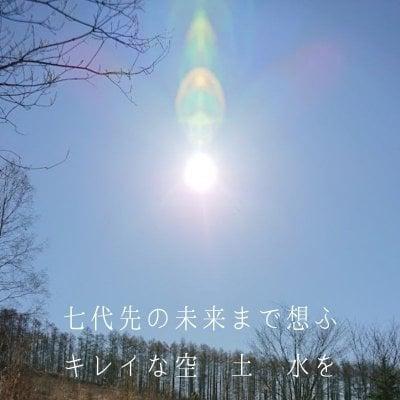 100円メグル∞お買い物チケット【店頭払い・店頭引取り限定】