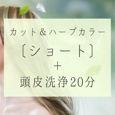 カット、ハーブカラー〔ショート〕頭皮洗浄20分16500円(税別)