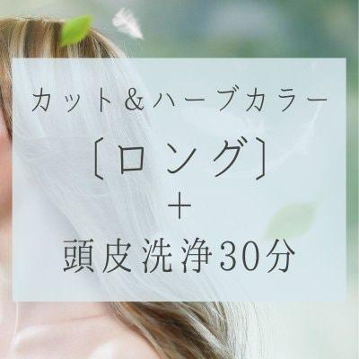 カット、ハーブカラー〔ロング〕頭皮洗浄30分19000円(税別)