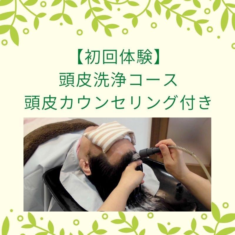 初回体験頭皮洗浄コース 頭皮カウンセリング付き 8800円のイメージその1