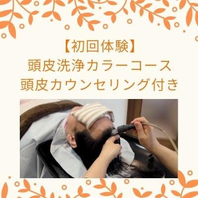 初回体験頭皮洗浄カラーコース 頭皮カウンセリング付き 15400円