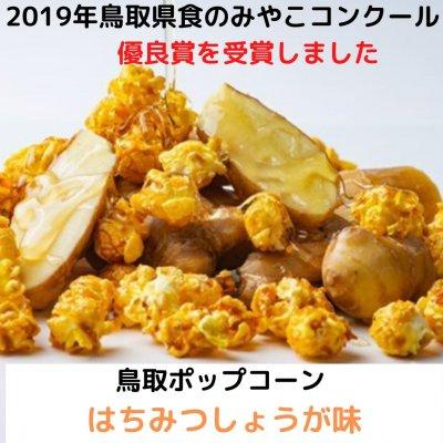 【2019年鳥取県食のみやこコンクール 優良賞】鳥取ポップコーン はちみつしょうが味 42g