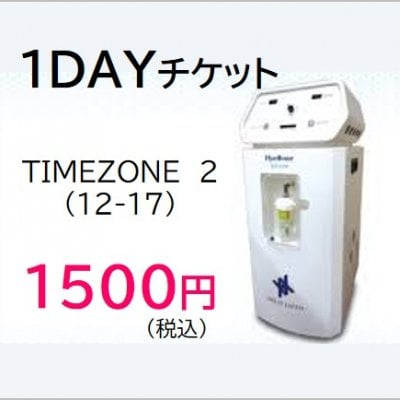 1DAYチケット タイムゾーン2