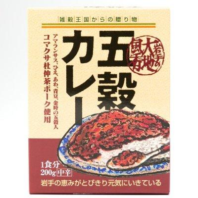 【5個入り / 岩手県】五穀カレー