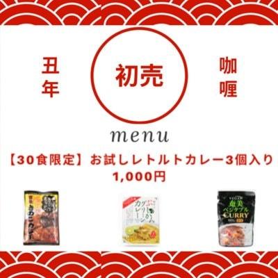 【残り3名】お試しレトルトカレー3個入り 1,000円