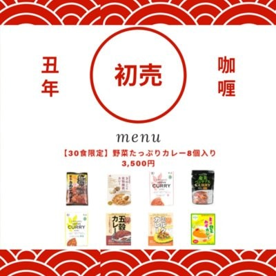 【残り3名】野菜たっぷりカレー8個入り 3,500円