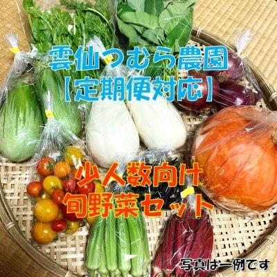 【定期便対応】【少人数向け】旬野菜セット/ 雲仙つむら農園 【送料無料】※一部地域を除きます