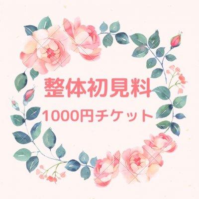 整体初見料 1000円 チケット