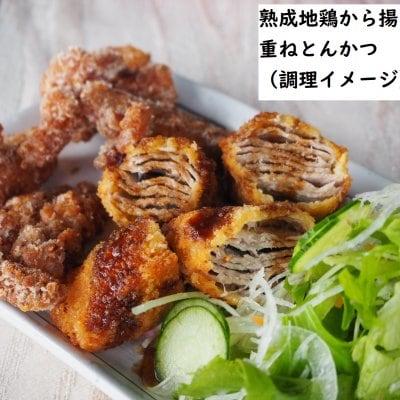 揚げ物セット(熟成地鶏からあげ・江田島地鶏串カツ・江田島ポーク重ね...