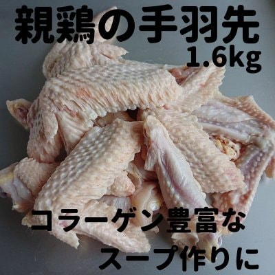【スープ用に!】江田島もみじ(親鶏)の手羽先1.6kg(産地直送・冷凍便)