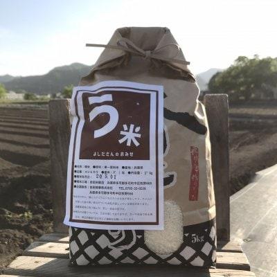 う米 コシヒカリ 5㎏ (但馬地区のお米)