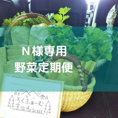 【N様専用】野菜定期便