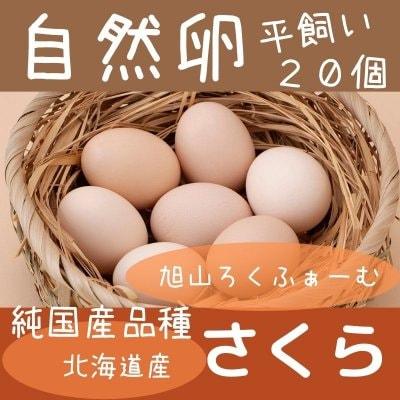 【希少】純国産品種「さくら」の平飼い自然卵。20個(10個パックが2つ)