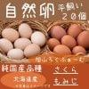 【希少・平飼い自然卵】純国産品種「さくら」「もみじ」20個(10個パックが2つ)