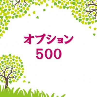オプション500