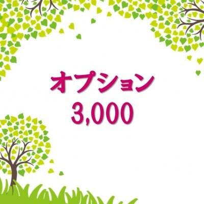 オプション3,000