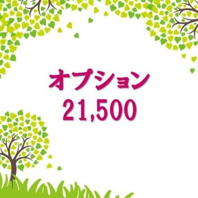 オプション21,500