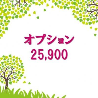 オプション25,900