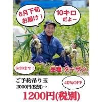 玉ねぎ10キロ(淡路島産) 下旬頃とれるたまねぎ10kg!無農薬 循環型農業の美味しいたまねぎ