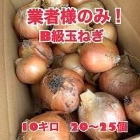 業者用わけあり玉ねぎ10キロ(淡路島産) 無農薬 循環型農業の美味しいたまねぎ