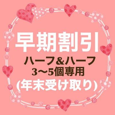 3〜5個注文専用  年末発送ハーフハーフ【チーズケーキとガトーショコラ】