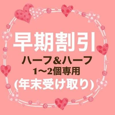 1〜2個注文専用  年末発送ハーフハーフ【チーズケーキとガトーショコラ】