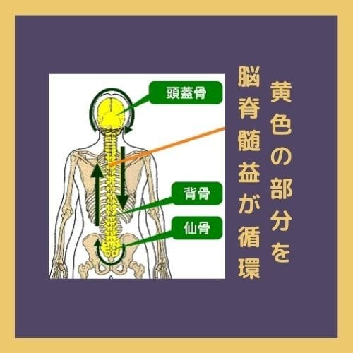 脳からスッキリ✨ライベート整体サロン〜夢桑〜 姫路市の女性セラピストが行う整体・ヒーリング✬婦人科トラブル・更年期障害・腰の痛みなど✬フェイシャルケアもお任せください✬クラニアルセラピー(クラニオセイクラルセラピー)のイメージその3