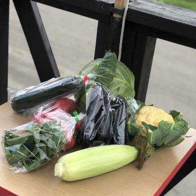 """【7品おまかせパック】""""長沼町の朝採り野菜""""をお渡しします。"""