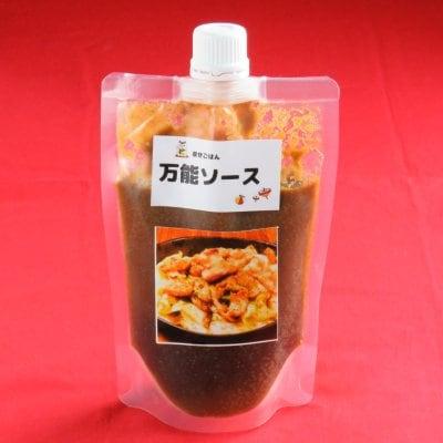 万能ソース(1本)【いろいろな食材でお楽しみ頂けます♪】