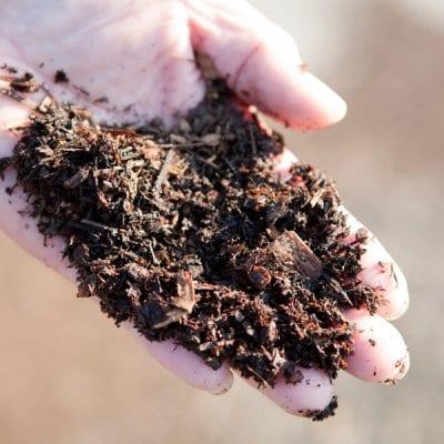 LaLaLaFarm発酵オンラインワークショップ 第2回「土の発酵」@ZOOM